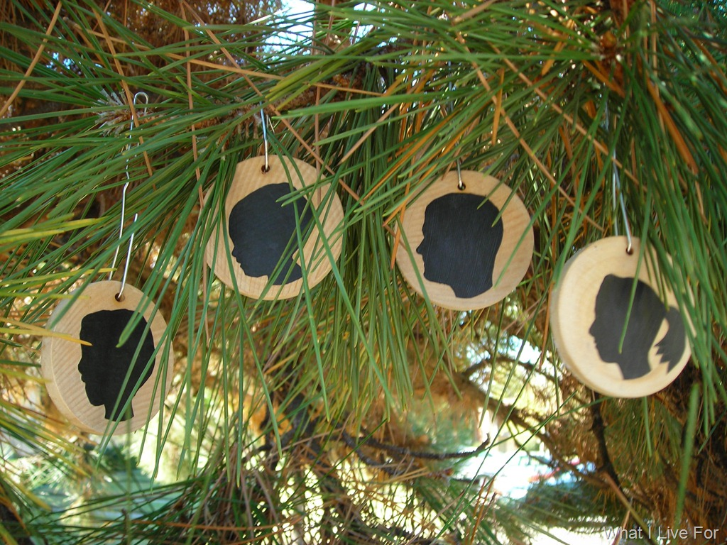 Make your own Silhouette Ornaments