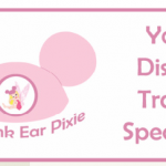 Birthday Bash Giveaway: Disney Gift Basket from The Pink Ear Pixie!