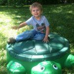 Wordless Wednesday: Turtle Sandbox!
