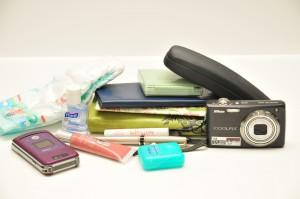 a cluster of items including diaper, hand sanitizer, checkbook, powder compact, camera, lip balm, eye glass case, lipstick, pen, dental floss, small paper book,