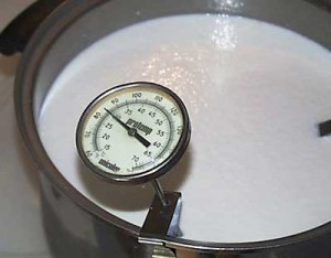 milk with a thermometer