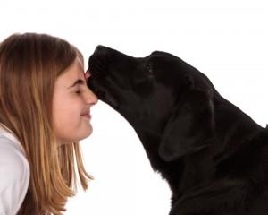 dog licking girl's nose