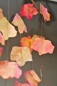 lots of leaves