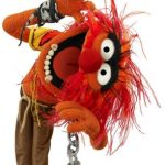 The Muppets: ANIMAL'S FIVE RULES OF COOL