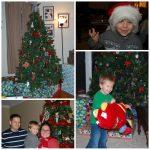 Wordless Wednesday: Christmas Celebrations