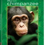 Review and Giveaway: Chimpanzee Blu-Ray Combo Pack