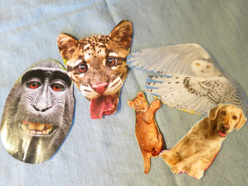 Make It Pretty Wednesdays Puppet Show Cut Outs