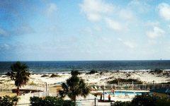 Having Fun in Gulf Shores!