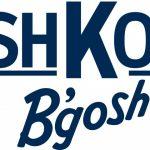 Holiday Shopping with OshKosh B'gosh! #OshKoshBgosh
