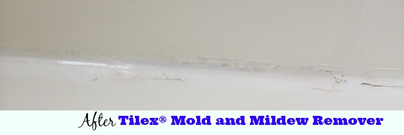 After Tilex® Mold and Mildew Remover