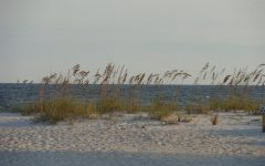 Planning Your Kid's Summer Break in Gulf Shores, AL