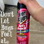 Don't Let Bugs Feel at Home Thanks To Hot Shot® Insecticides #HotShot
