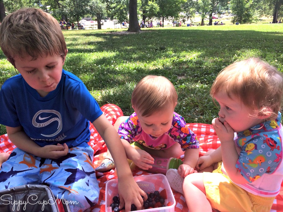 Kid-Friendly Picnic Food - Sippy Cup Mom