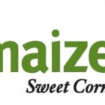 Amaize Sweet Corn – An Amazing Addition to your Meal!