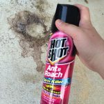 Get Rid of Unwanted Guests with Hot Shot® Insecticides #HotShot