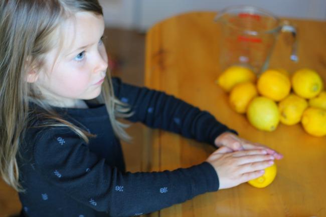 lemonade pic 3