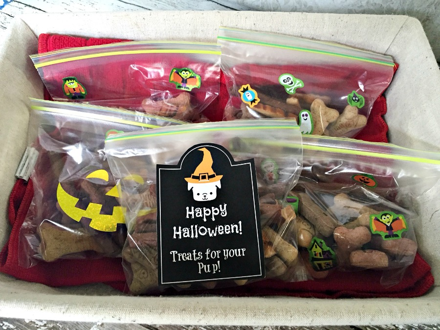 Halloween Dog Treats