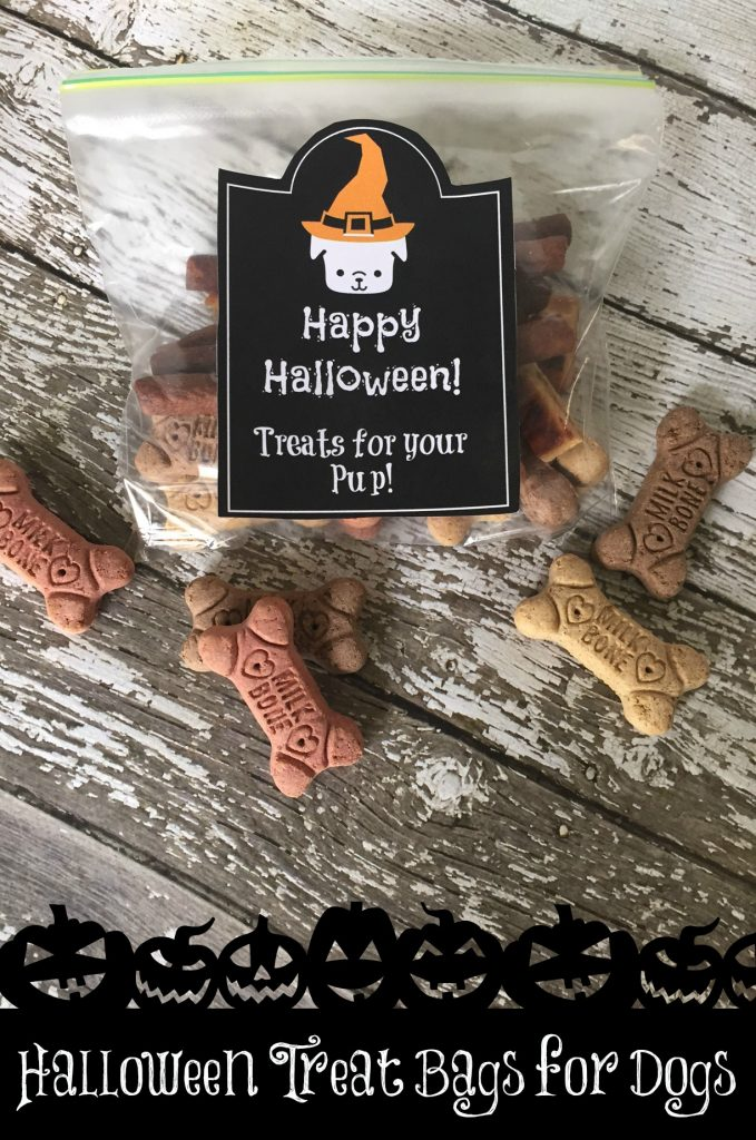Halloween Treat Bags for Dogs