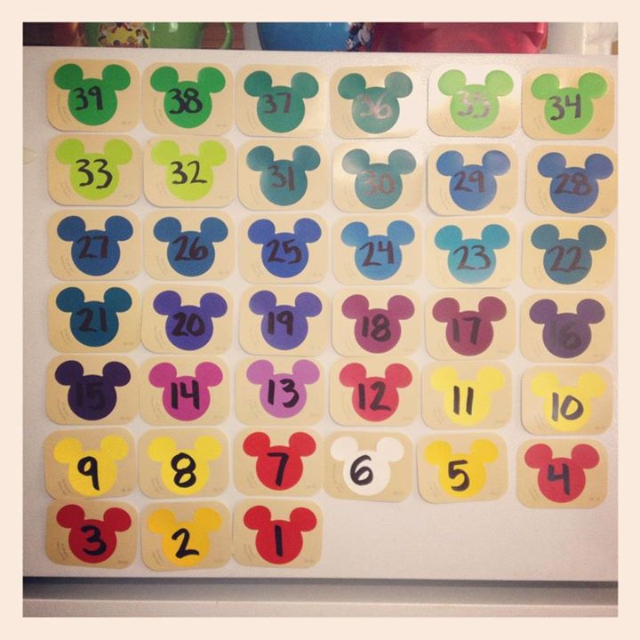 WDW Countdown Fridge