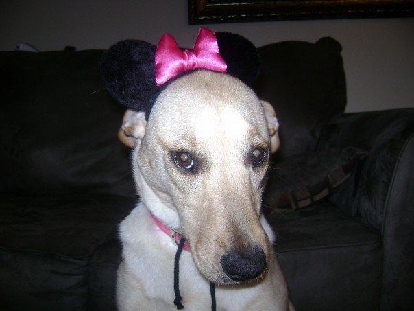Zoey Minnie