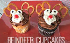 Reinderr Cupcakes Recipe