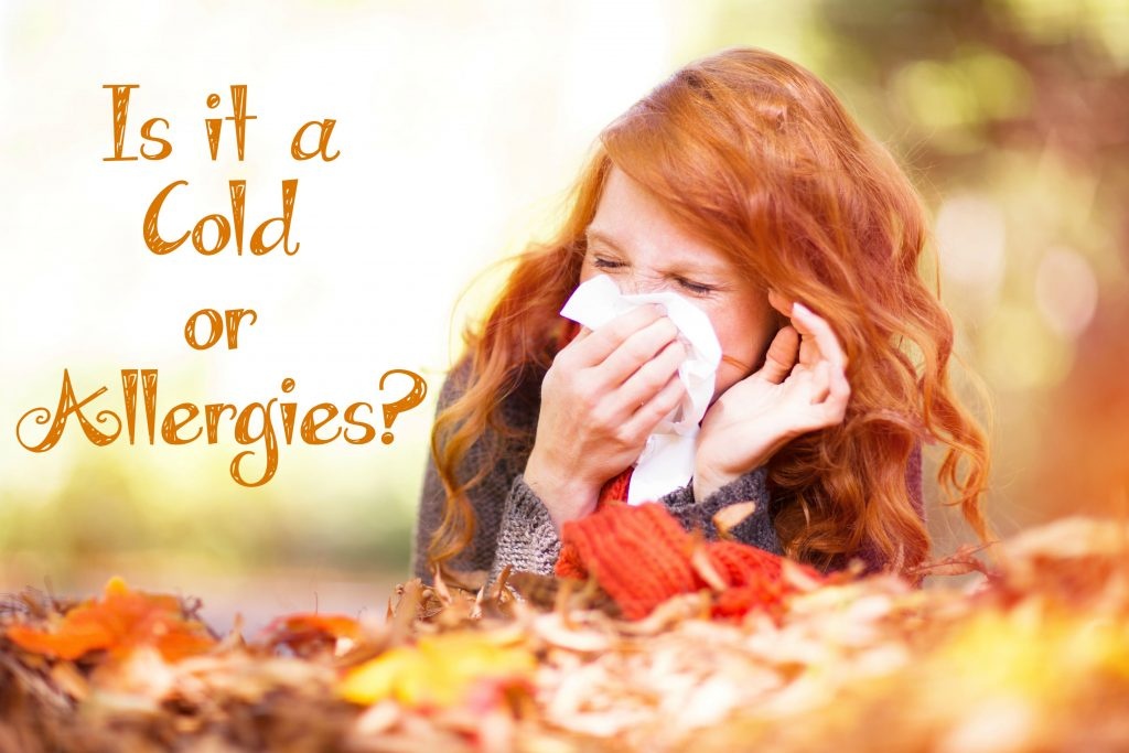Is It a Cold or Allergies