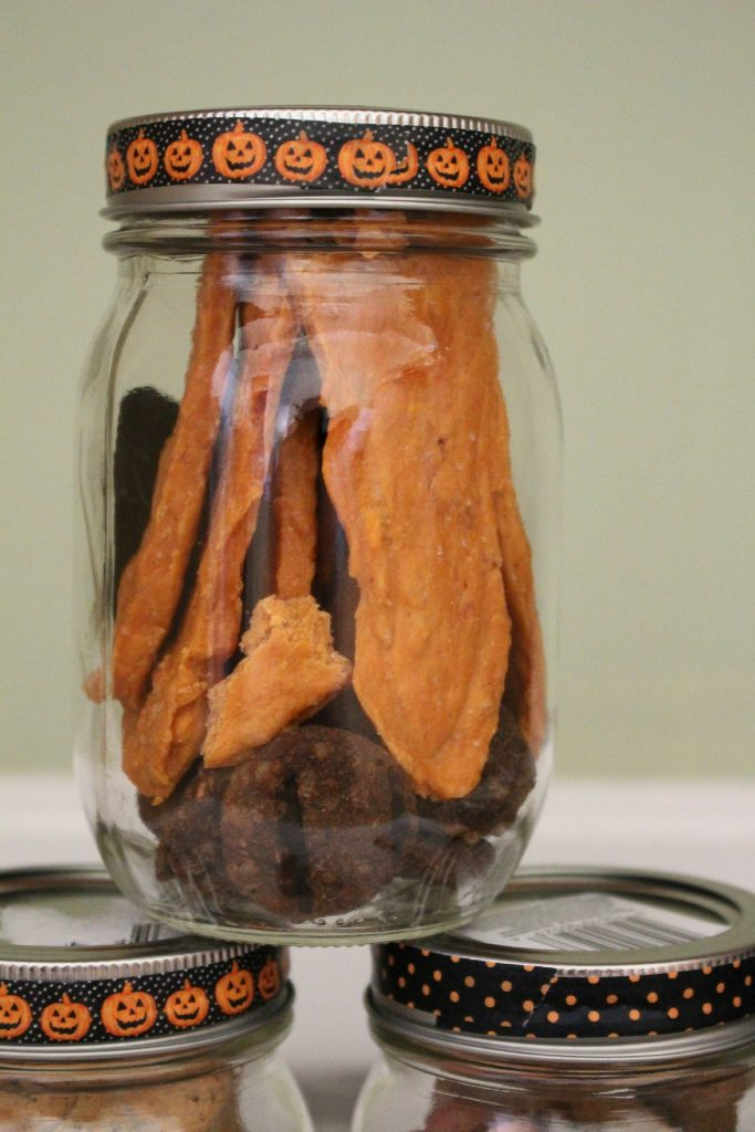 Halloween Treats for Dogs in Jar