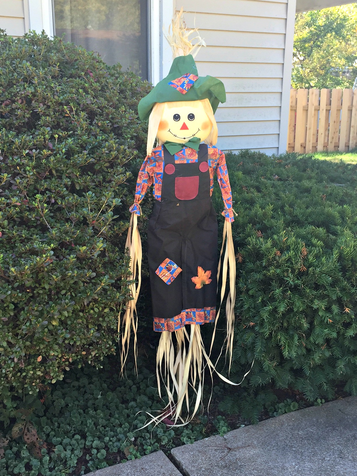 Here Today Scarecrow
