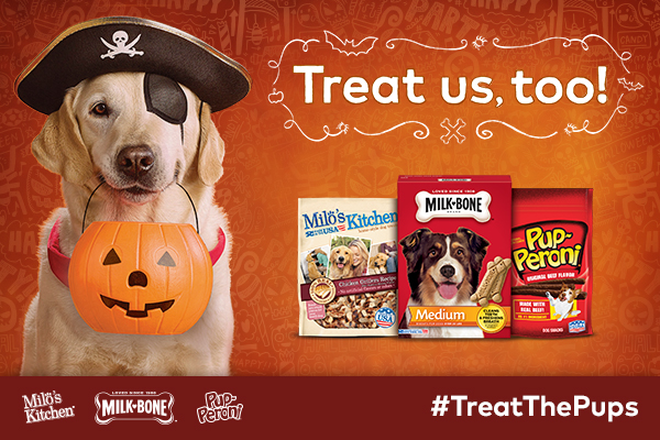 Treat the Pups for Halloween!