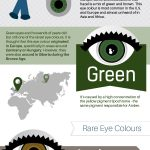 Fascinating Facts about Eye Colors