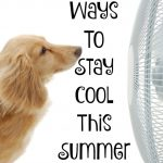 Five Ways to Stay Cool This Summer