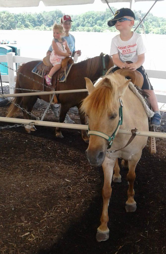 Eckert's Pony