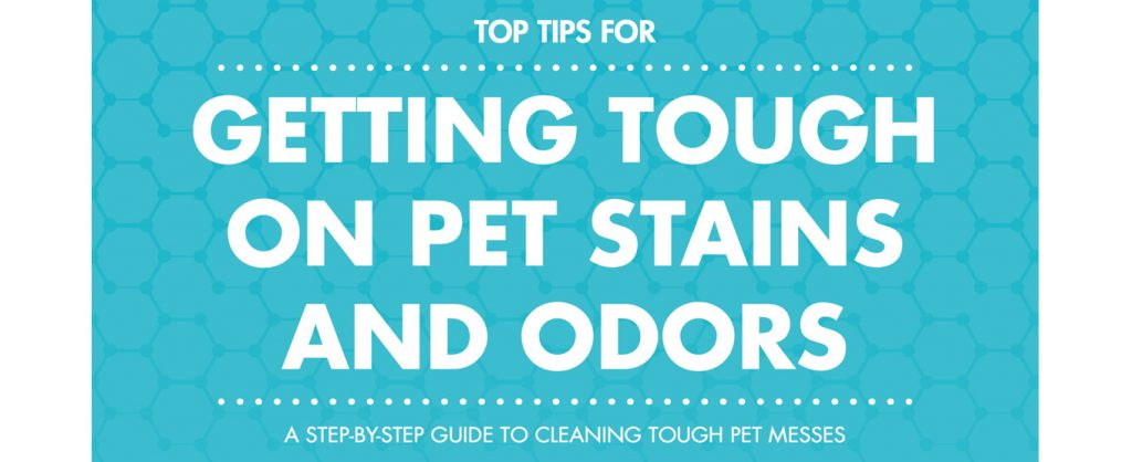 Free E-BOOK: GETTING TOUGH ON PET STAINS & ODORS