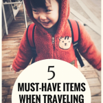 5 Must-Have Items When Traveling With A Toddler