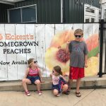 Peach Picking at Eckert's Farms