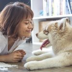 Your Guide to Apartment Living With Pets