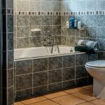 Why You Should Contact A Professional Plumber For Your Toilet Problems?
