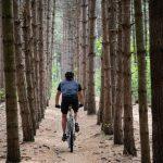5 Bike Traveling Dangers