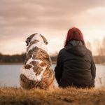 5 Things to Do After Adopting a Pet