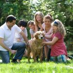 How to Teach Children How to Take Care of a Pet Responsibly